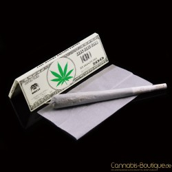 Breit King Size Paper Dollar Edition